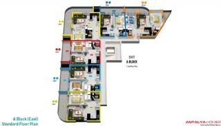 Appartements Cleopatra Select, Projet Immobiliers-2