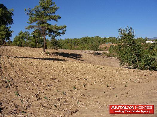 Terrain pour construire des villas side turquie for Acheter un terrain pour construire