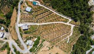أرض بأشجار الأفوكادو والليمون في ألانيا تركيا, الانيا / المركز - video