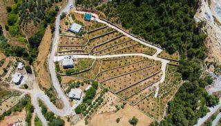 أرض بأشجار الأفوكادو والليمون في ألانيا تركيا, الانيا / المركز