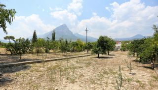 Furnished Homes in Konyaalti Surrounded by Fruit Trees, Antalya / Konyaalti - video