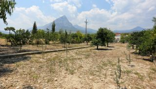 Furnished Homes in Konyaalti Surrounded by Fruit Trees, Antalya / Konyaalti