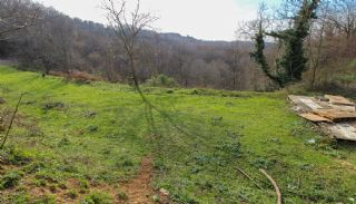 Investment Land for Sale with Forest View in Turkey Istanbul, Istanbul / Beykoz - video